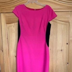 Cynthia Steffe Pink and Black Sheath Dress SZ 12